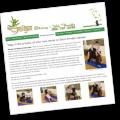 Bamboo Asana Yoga